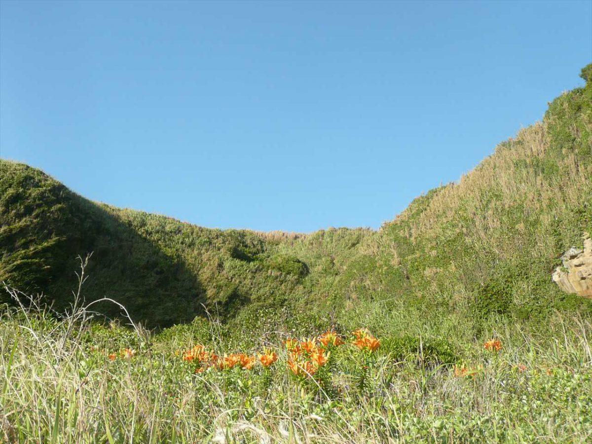 城ヶ島南岸の地形