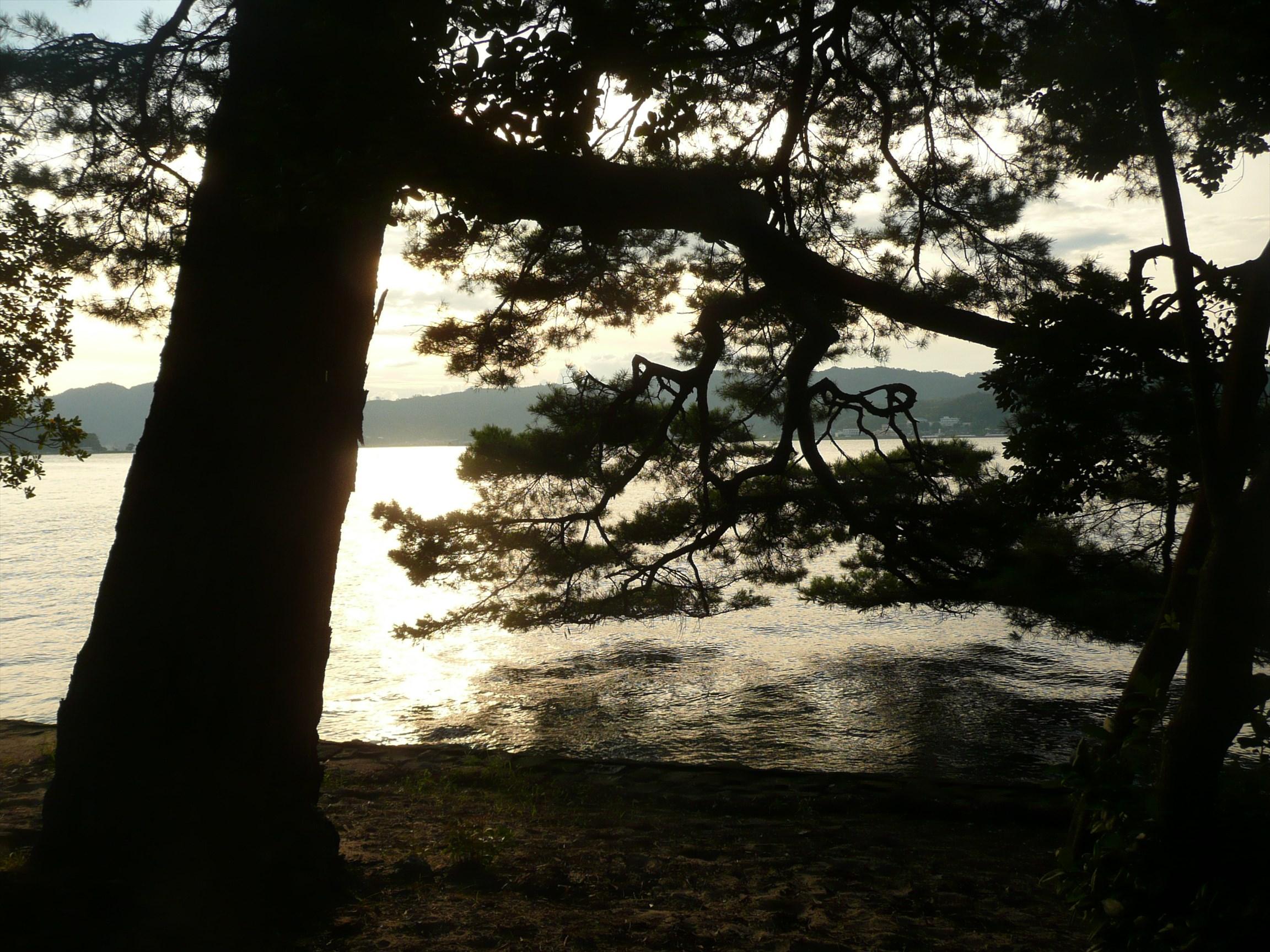 天橋立 日本三景の夕景を見てきたぞ 徒歩より自転車がオススメ