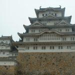 姫路城の改修前と改修後(桜&ライトアップ)