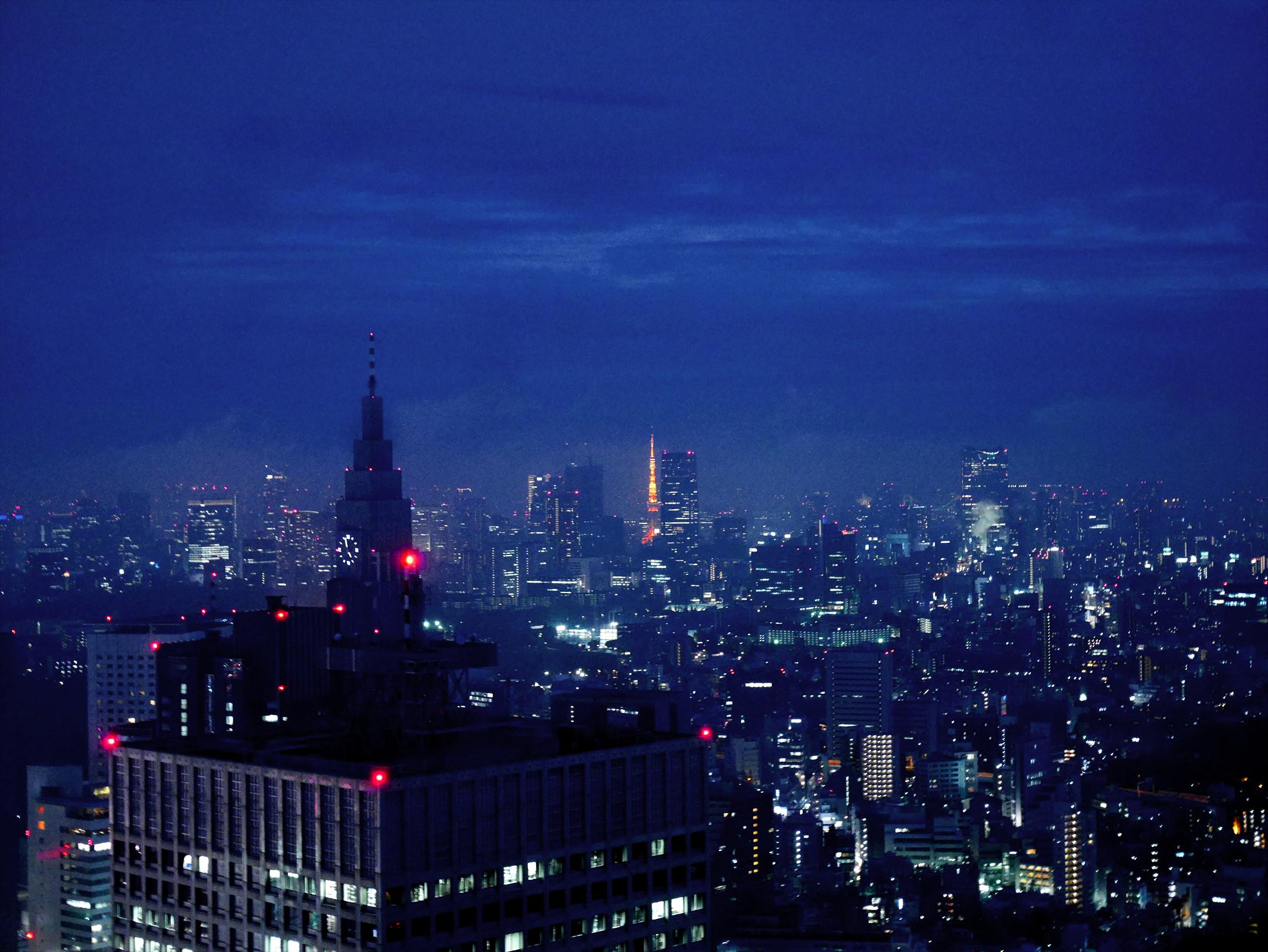 新宿のイルミネーションと都庁から見た夜景