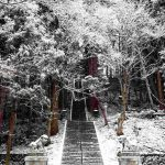 雪の戸隠神社を徒歩で巡った
