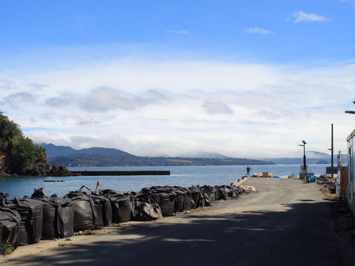大泊港の桟橋