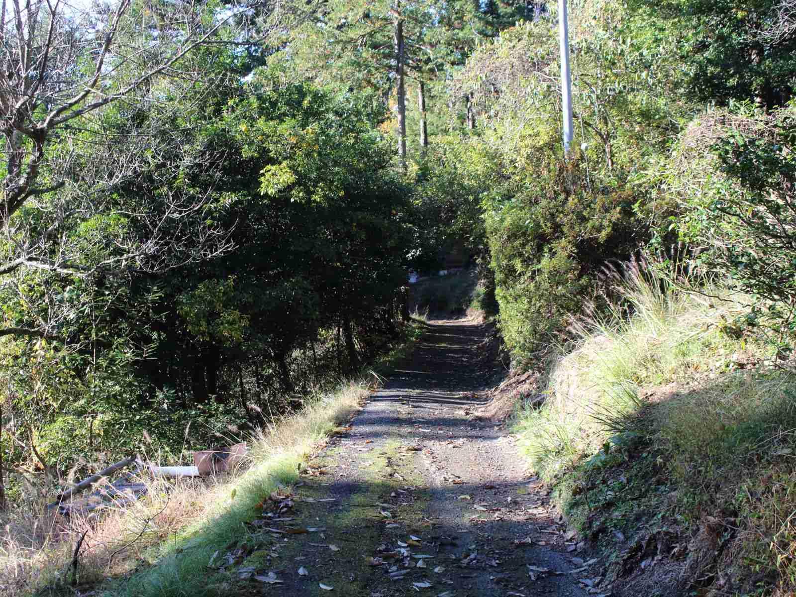 岳集落への道