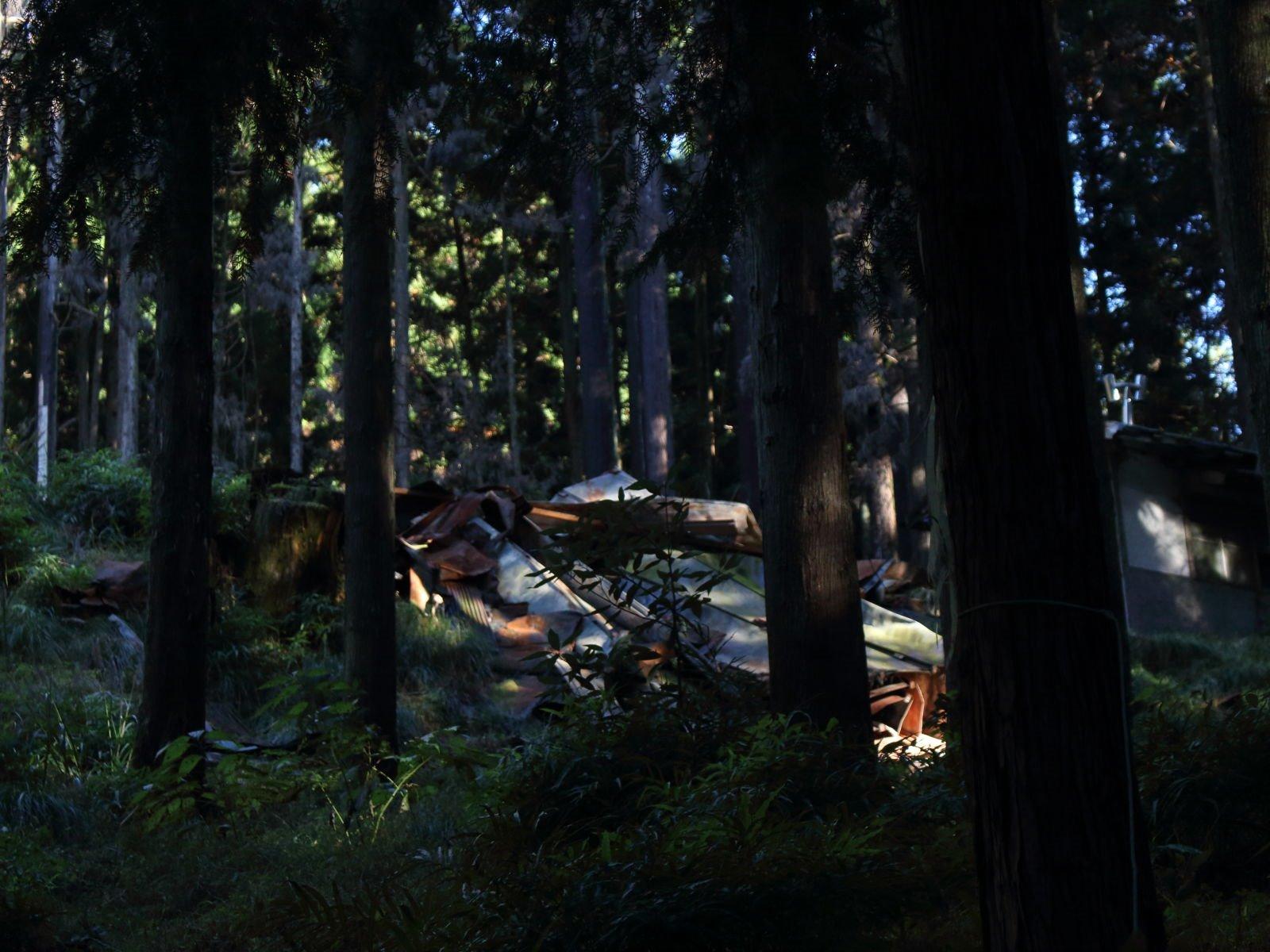 嶽集落の風景