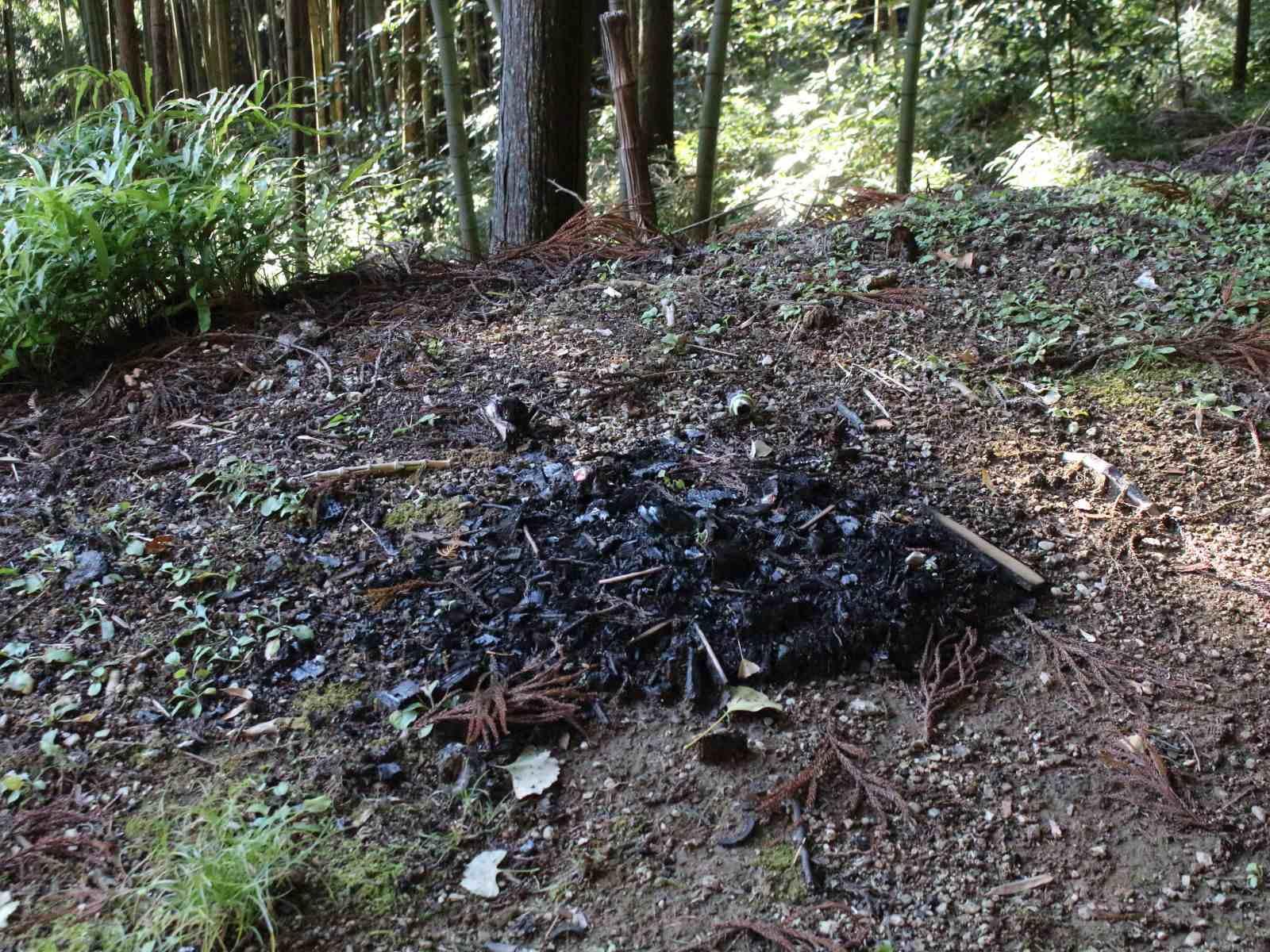 十二支神社の謎の焼け跡