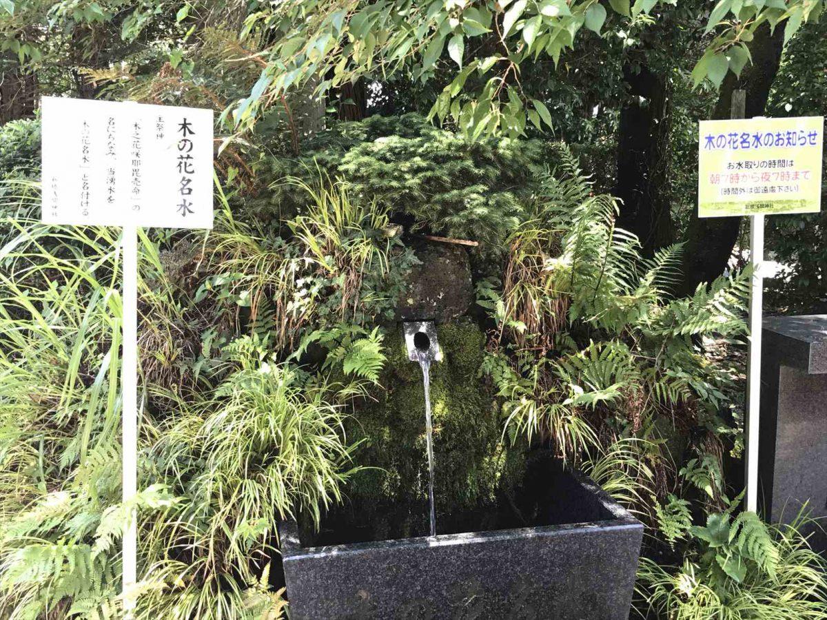 御殿場浅間神社の富士山の湧き水