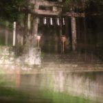 二岡神社が心霊スポットと知りながらホタルを撮影しに行った結果・・・