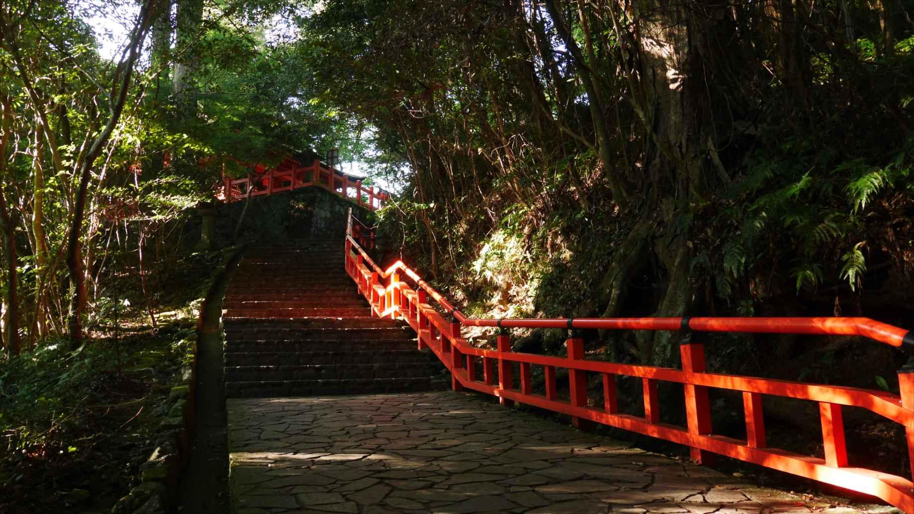 宇佐神宮の上宮への道