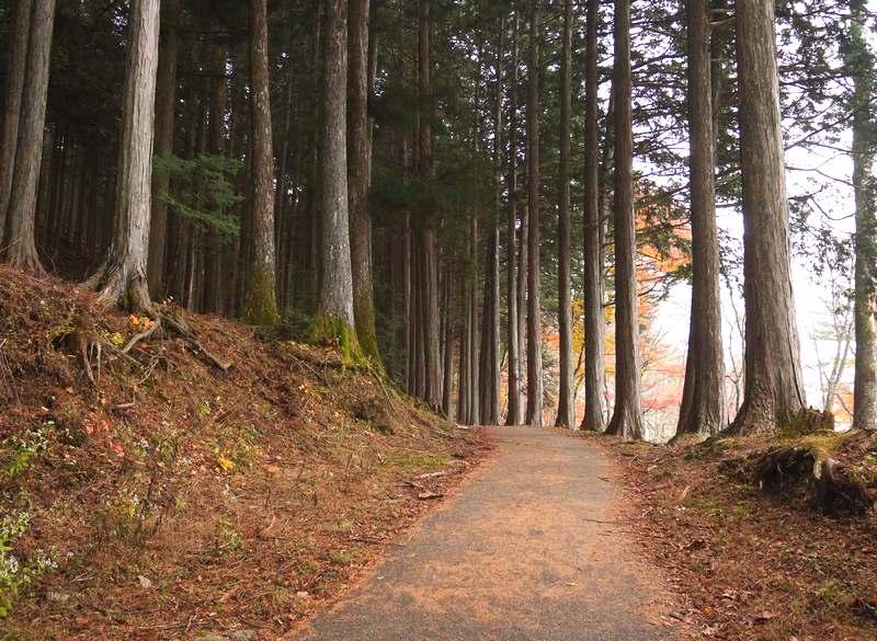 三峯神社奥宮入り口付近