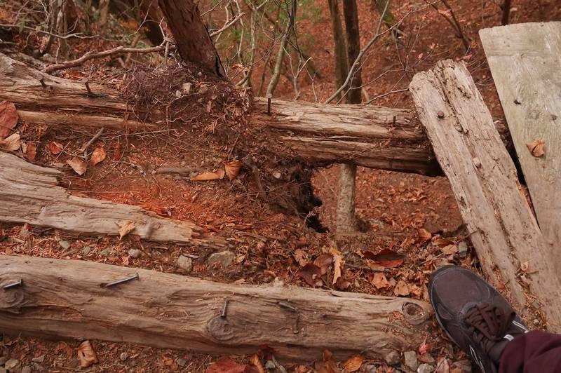 板が腐り落ち、釘がむき出しの橋。