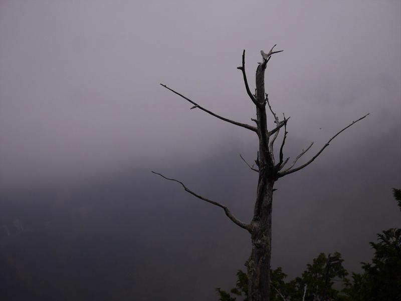 妙法ケ岳の山頂