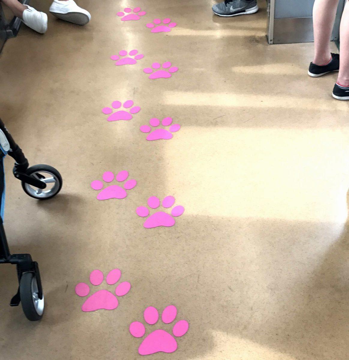 猫電車の猫の足跡