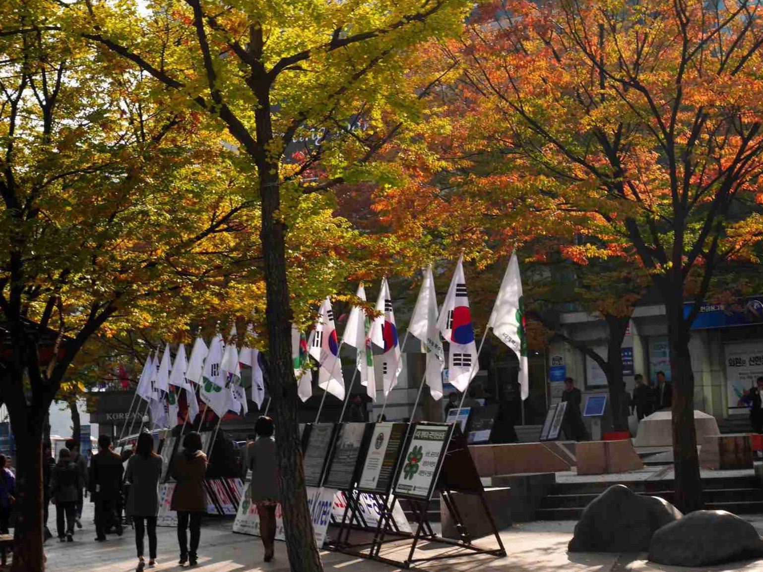韓国の街の国旗
