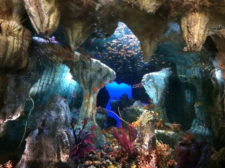 サンシャイン水族館・おとぎの国