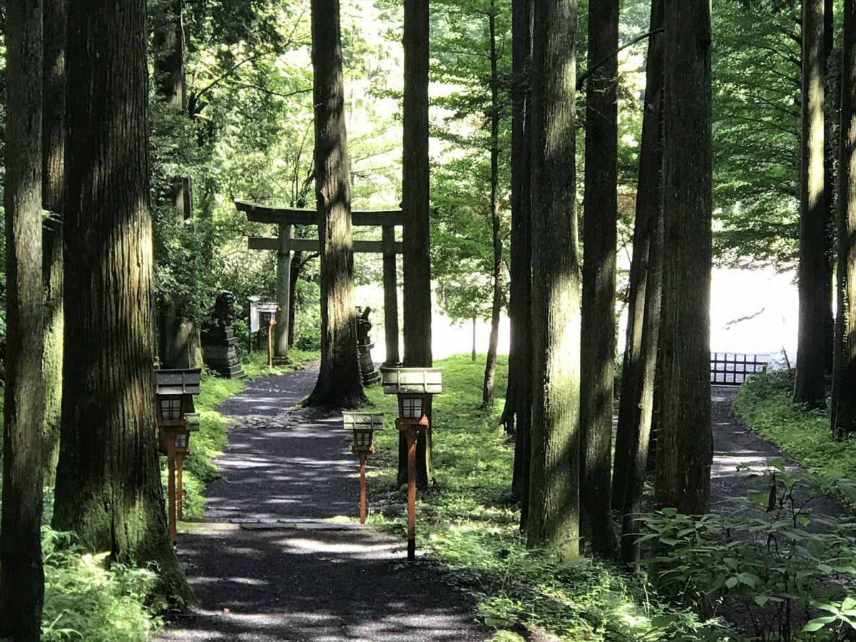 二岡神社の鳥居と灯篭