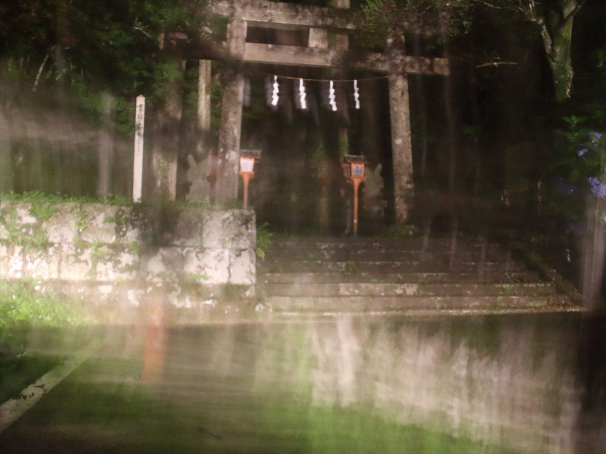 夜の二岡神社の鳥居